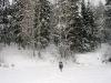 P1050186  Прекрасный зимний день