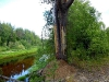 DSCN3013 Тихая река Кулой