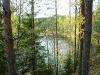P1060303 Таёжная речка