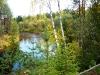 P1060341 Течёт река ...