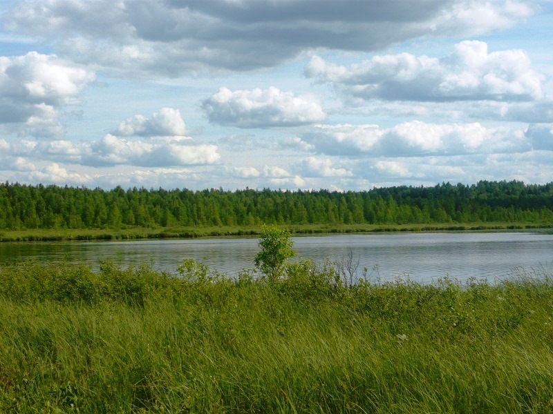 P1020115  Озеро без названия