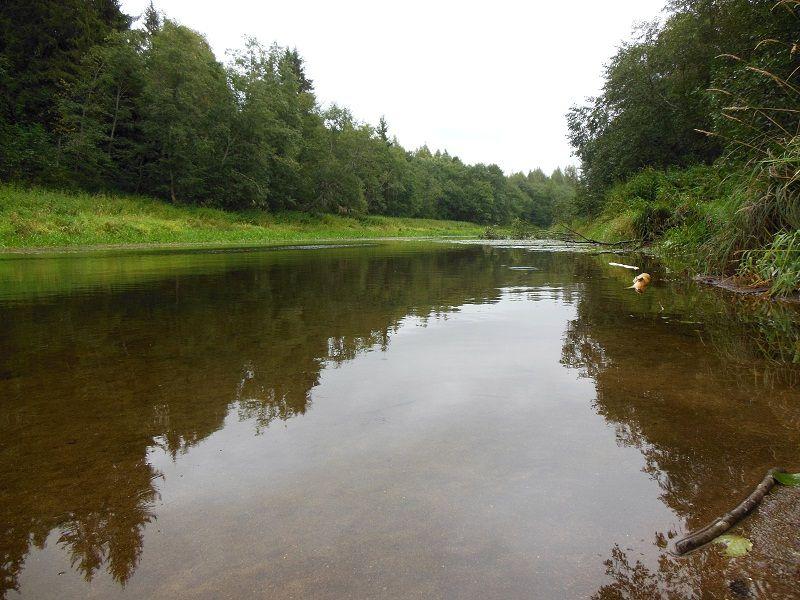 DSCN4148  На речке перед дождём