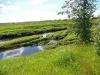 DSCN2318 Маленькая тихая речка
